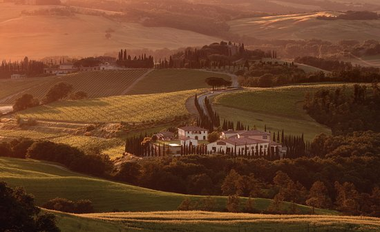 Caparzo wijn domein in Montalcino